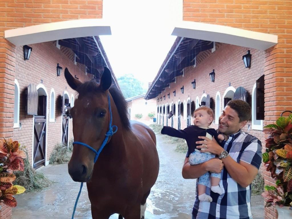 Foto: Cavalo, o melhor amigo do homem