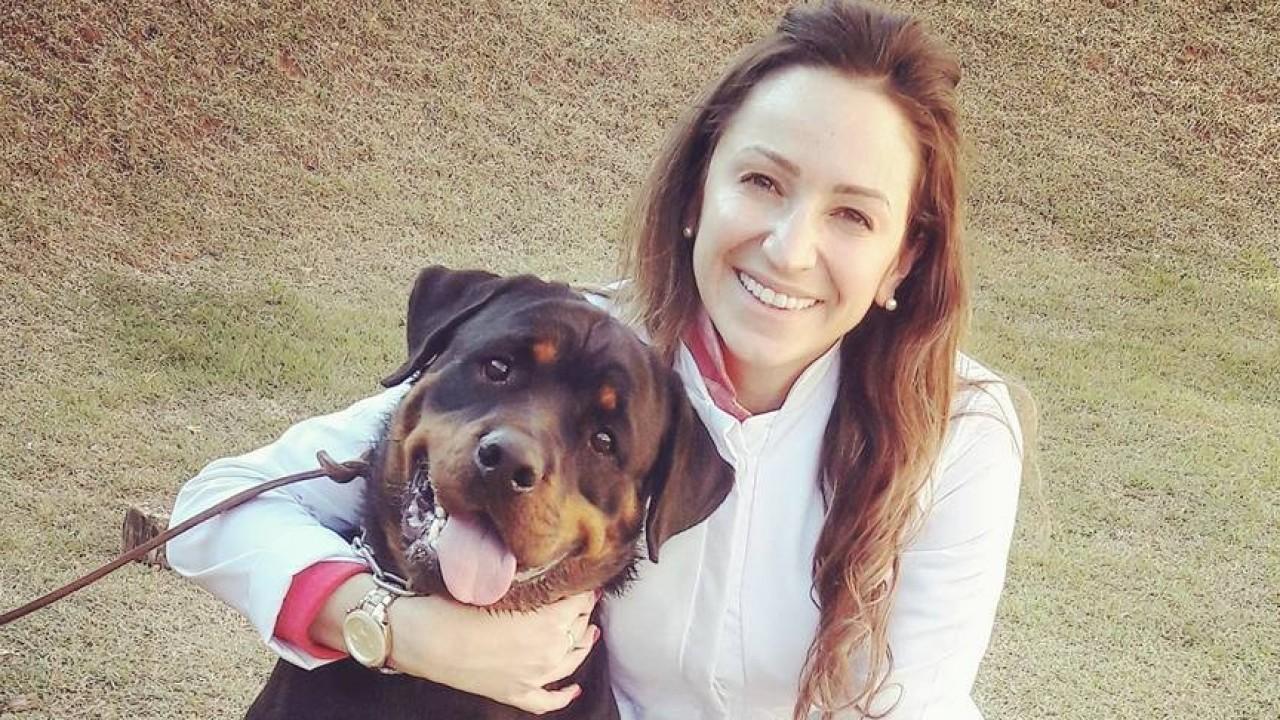 Foto: A vacinação nos pets