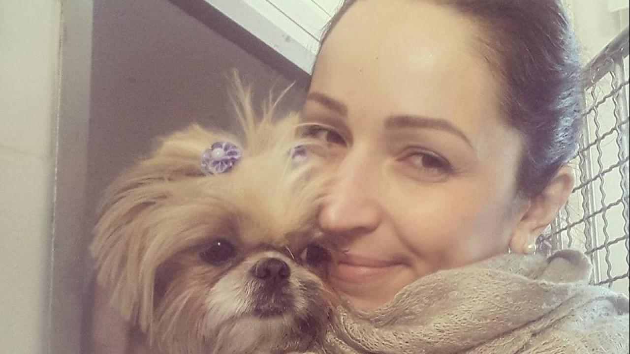 Foto: Dor nas costas em cães e gatos