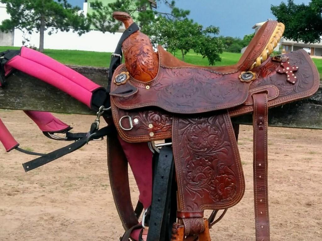Foto: O meio do cavalo sob o aspecto social