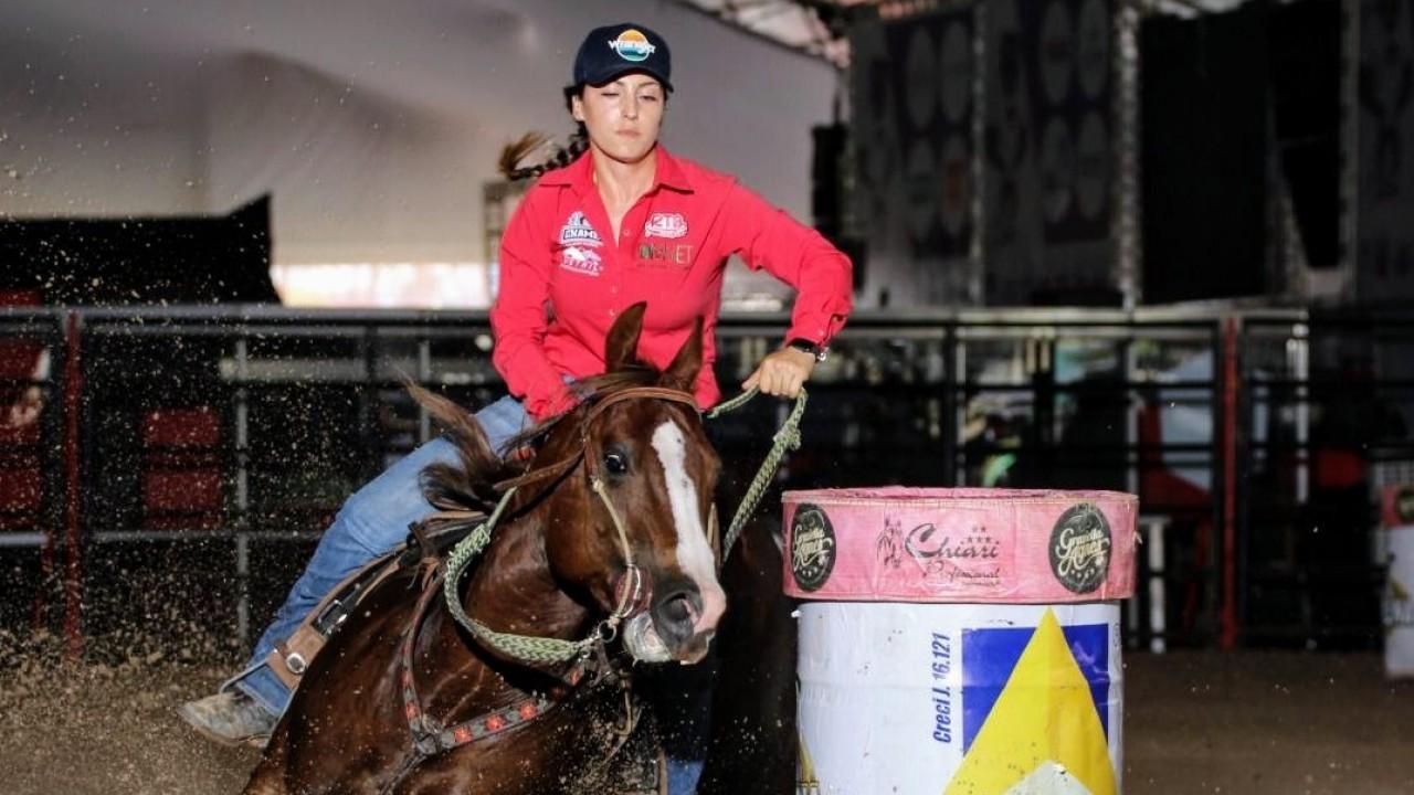 Foto: Quanto custa manter um cavalo de Tambor?